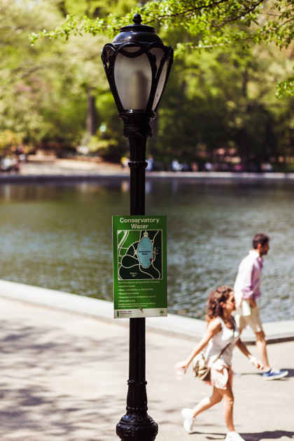 NYC Central Park Elopement