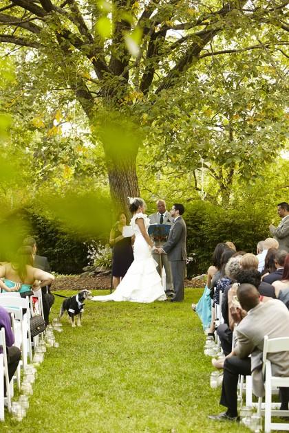14 Ja Feast At Round Hill Wedding Photography1