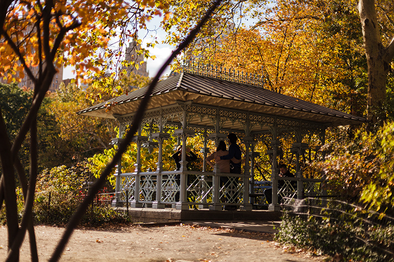 Central Park Elopement