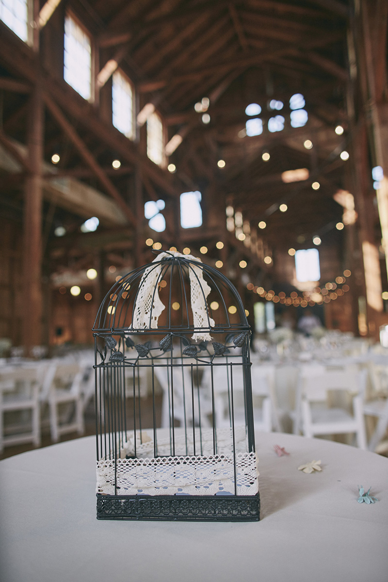 wedding gift bird cage