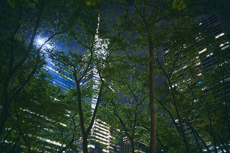 Bryan Park at night
