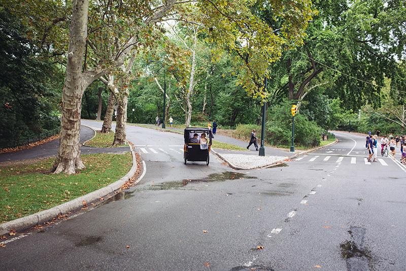 rickshaw central park
