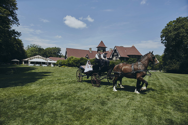 bride coming in horse carriage