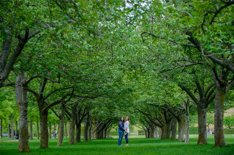 Brooklyn Botanic Garden Engagements