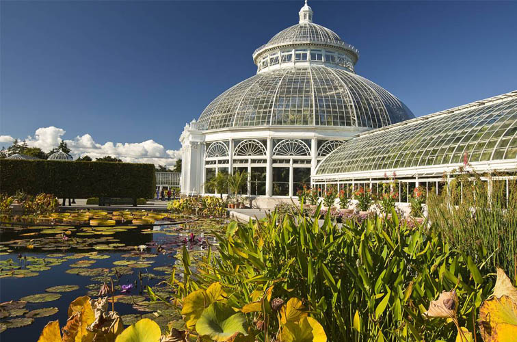 New York Botanical Garden Engagements